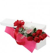 six-red-roses-in-a-box